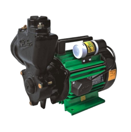 DOMESTIC MONOBLOCK PUMPS - STAR